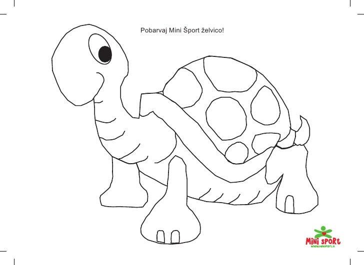 Pobarvaj Mini Šport želvico!