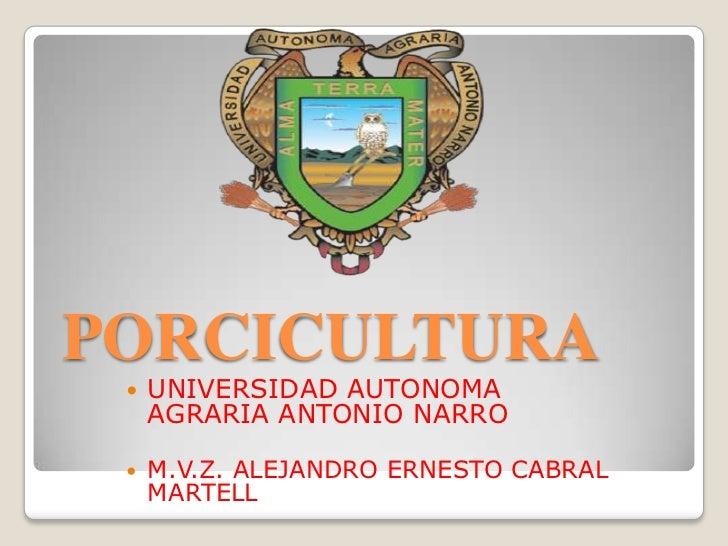 PORCICULTURA    UNIVERSIDAD AUTONOMA     AGRARIA ANTONIO NARRO    M.V.Z. ALEJANDRO ERNESTO CABRAL     MARTELL