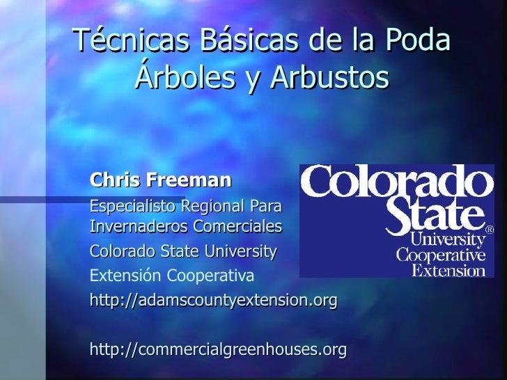 Técnicas Básicas de la Poda Árboles y Arbustos <ul><ul><ul><li>Chris Freeman </li></ul></ul></ul><ul><ul><ul><li>Especiali...