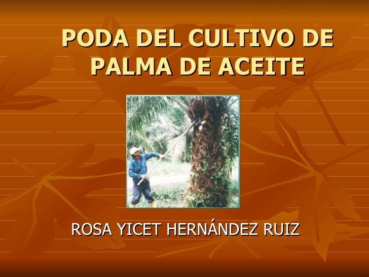 PODA DEL CULTIVO DE PALMA DE ACEITE ROSA YICET HERNÁNDEZ RUIZ