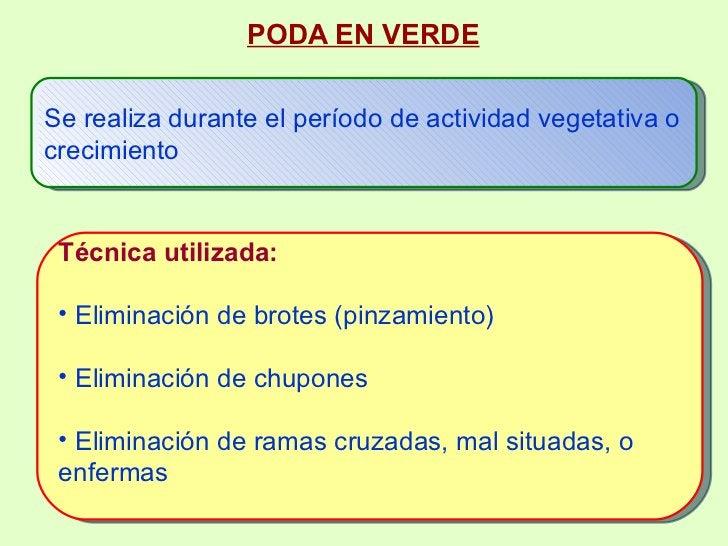 <ul><ul><li>PODA EN VERDE </li></ul></ul><ul><ul><ul><ul><li>Se realiza durante el período de actividad vegetativa o creci...