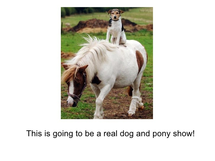 This is going to be a real dog and pony show!