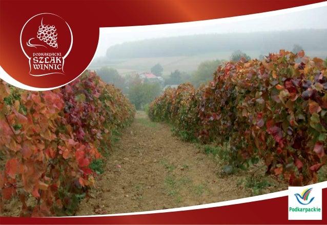 --- Podkarpackie winnice W ciągu ostatnich dwóch lat nastąpiły w Polsce znaczące zmiany, dotyczące krajowego winiarstwa. J...