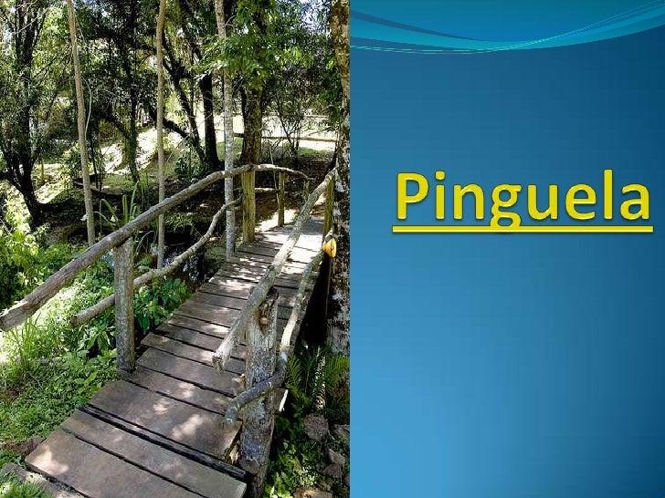Pinguela<br />