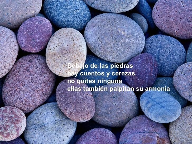 Debajo de las piedras hay cuentos y cerezas no quites ninguna ellas también palpitan su armonia