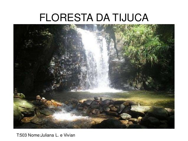 FLORESTA DA TIJUCA T:503 Nome:Juliana L. e Vivian