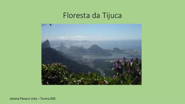 Floresta da Tijuca Juliana Paiva e Lívia – Turma 503