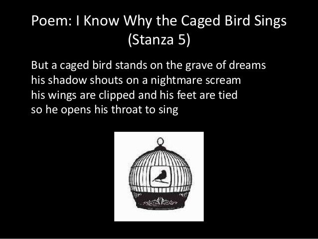 poem i know why the caged bird sings