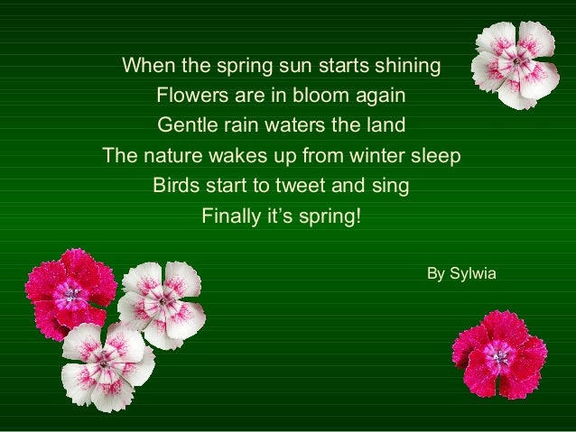 Poems about spring by ola and ewelina 6 when the spring sun starts shining flowers mightylinksfo