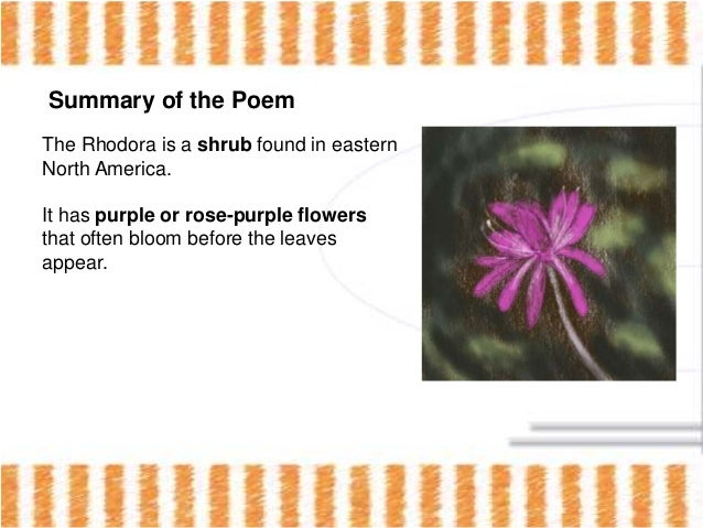 an overview of ralph waldo emersons poem the rhodora What people are saying - write a review  the best of ralph waldo emerson: essays, poems,  the best of ralph waldo emerson: essays, poems, addresses.