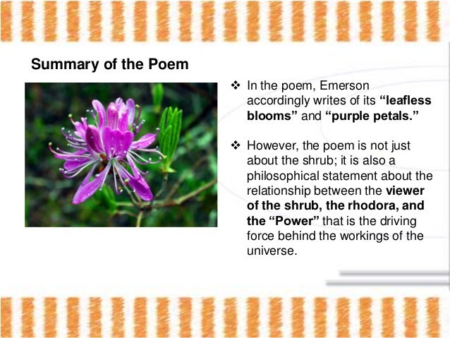 the rhodora poem critique 'the rhodora' by ralph waldo emerson is one of the poems from 'poems', a collection of his poetic works, published in the year of 1847 in 'the rhodora' the poet seems to be enraptured by the rhodora, a common flowering shrub in new england.