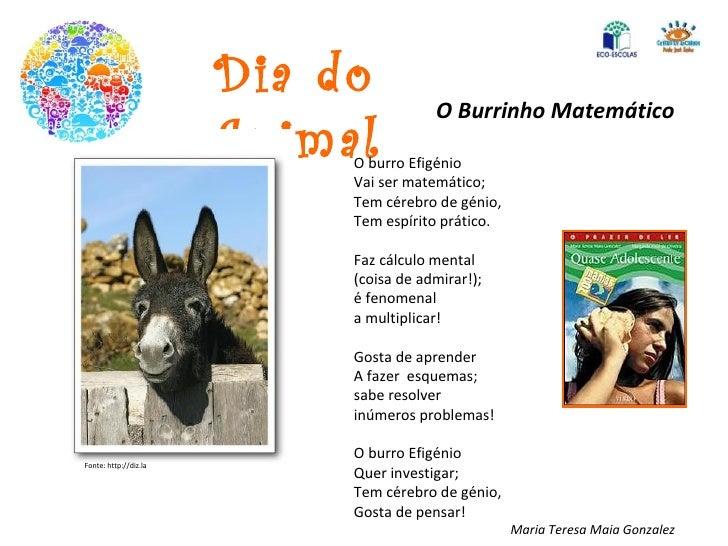 Dia do Animal O Burrinho Matemático O burro Efigénio Vai ser matemático; Tem cérebro de génio, Tem espírito prático. Faz c...