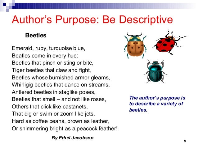 Poetry author's purpose and mood