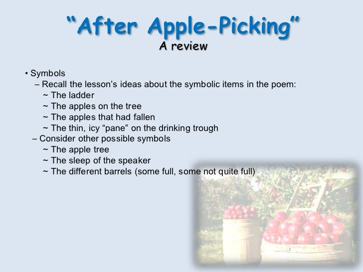 a critical analysis of after apple picking by robert frost A guy has been picking apples all day up on a ladder he hasn't picked every last apple, but night is coming and he is tired he remembers the strange vision he had that morning when he looked at a bunch of grass through a sheet of ice he removed from a drinking trough it looked like the world was .