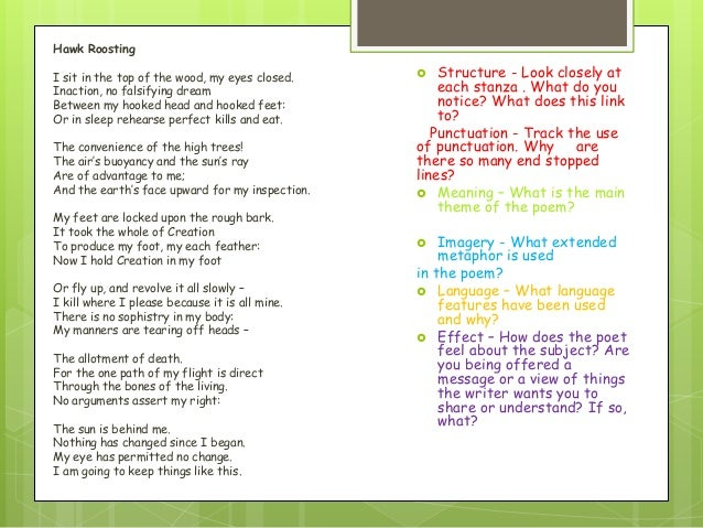 hawk roosting analysis Get an answer for 'summarize the poem hawk roosting by ted hughes what is the poem's theme' and find homework help for other ted hughes questions at enotes.