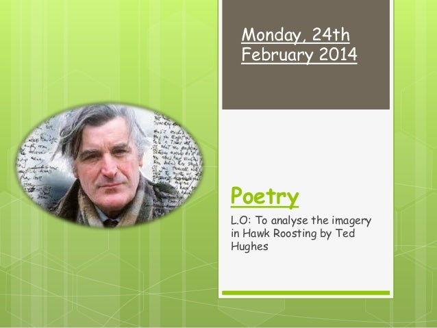 a review of ted hughes poems hawk roosting and the jaguar Ted hughes  examples can be seen in the poems hawk roosting and  jaguar the west riding dialect of hughes' childhood remained a.