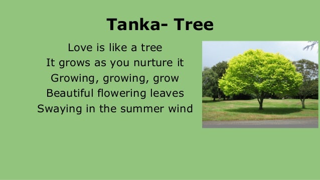 Poetry power point for Tanka poem template