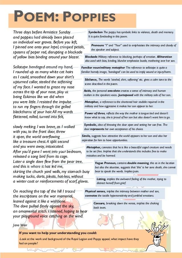 Read e-book Big Poppy: Shmoop Poetry Guide