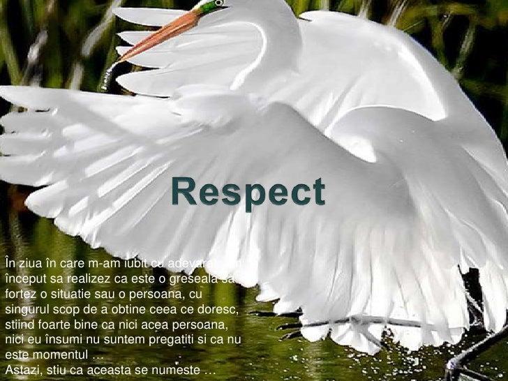 Respect<br />Înziuaîn care m-am iubit cu adevarat, am începutsarealizez ca este o gresealasafortez o situatiesau o persoan...