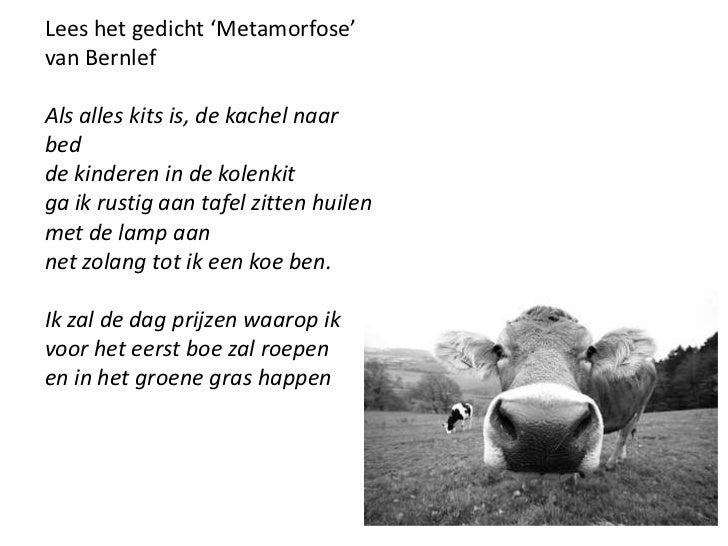 Poezie Deel 4
