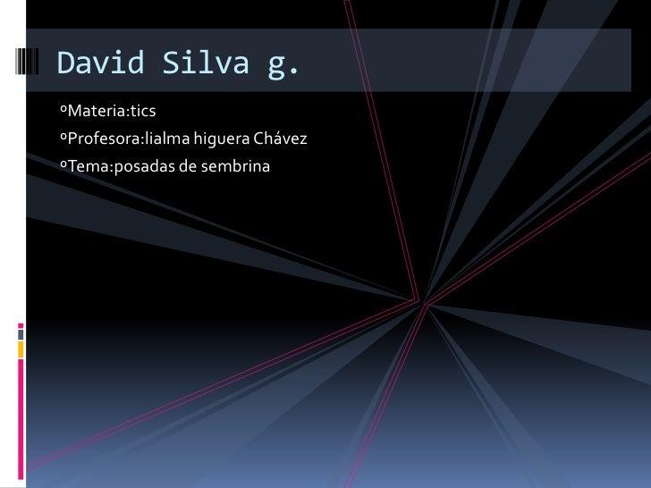 ºMateria:tics<br />ºProfesora:lialma higuera Chávez<br />ºTema:posadas de sembrina<br />David Silva g.<br />