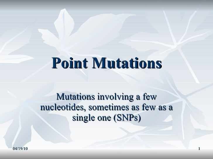 Point Mutations Mutations involving a few nucleotides, sometimes as few as a single one (SNPs) 04/19/10