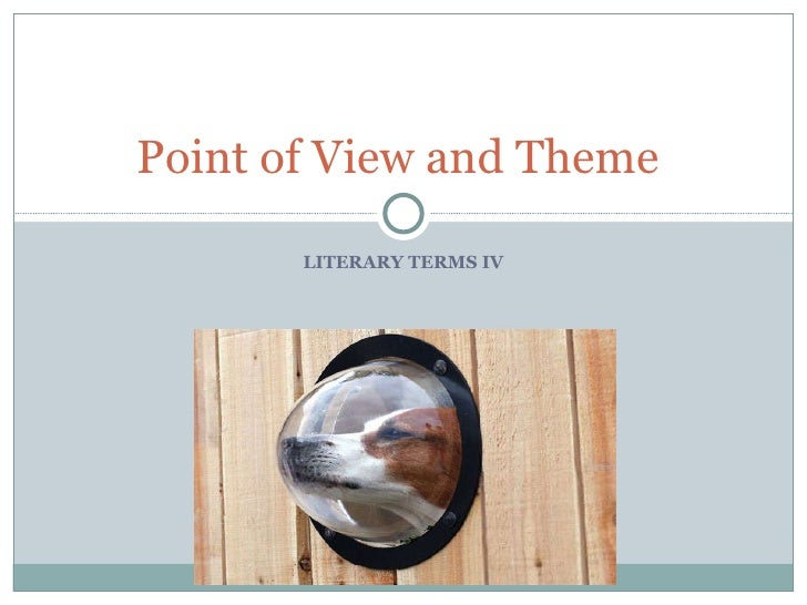 LITERARY TERMS IV Point of View and Theme