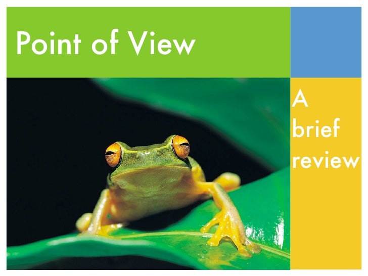 Point of View                A                brief                review