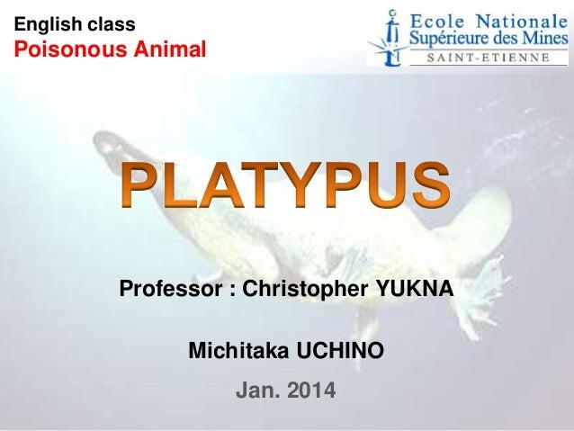 English class  Poisonous Animal  Professor : Christopher YUKNA Michitaka UCHINO Jan. 2014