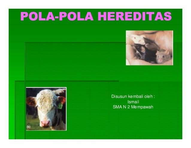 POLA-POLA-POLA HEREDITAS           Disusun kembali oleh :                  Ismail           SMA N 2 Mempawah