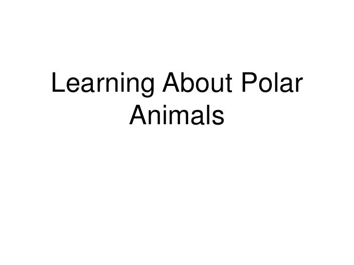 Learning About Polar Animals<br />
