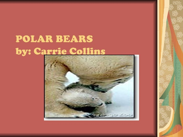 POLAR BEARSby: Carrie Collins
