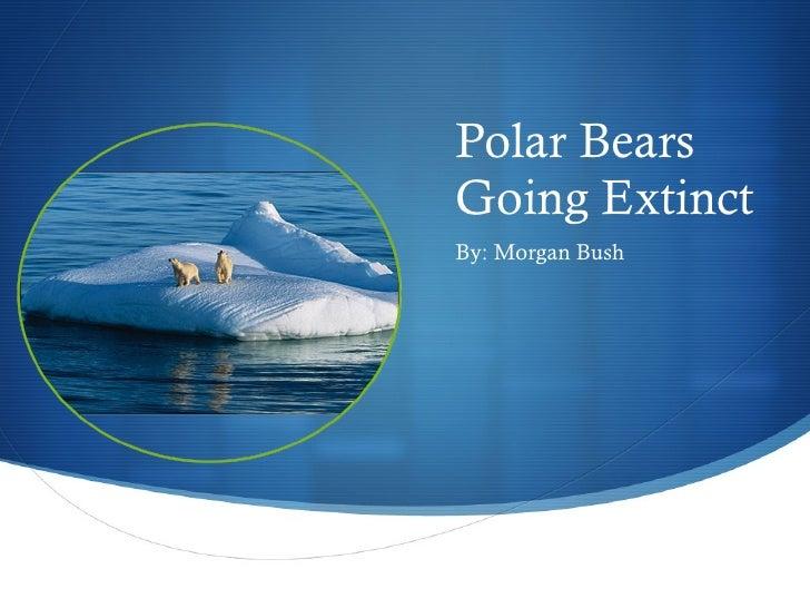 Polar Bears Going Extinct <ul><li>By: Morgan Bush </li></ul>