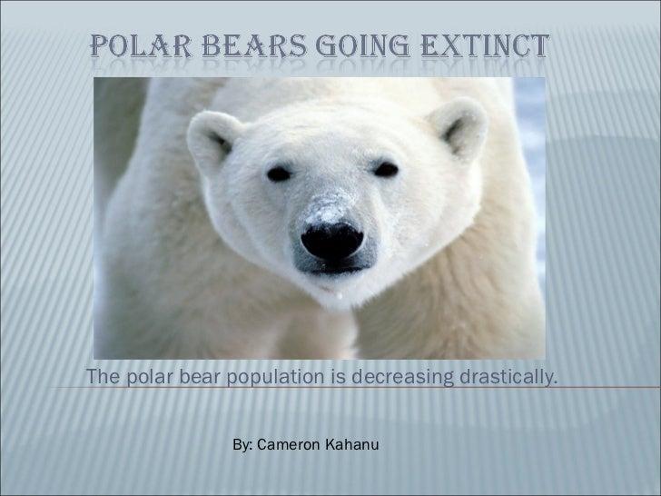 The polar bear population is decreasing drastically. By: Cameron Kahanu