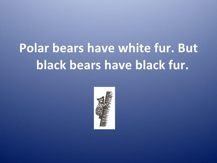 polar bears and black bears 5 728?cb=1294862717 polar bears and black bears