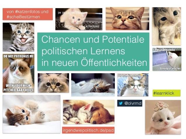 Chancen und Potentiale  politischen Lernens  in neuen Öffentlichkeiten  #learnklick  von #katzenfotos und  #scheißestürmen...