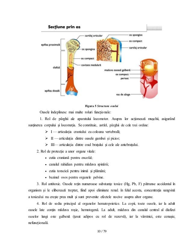 Poliartrita reumatoida picior