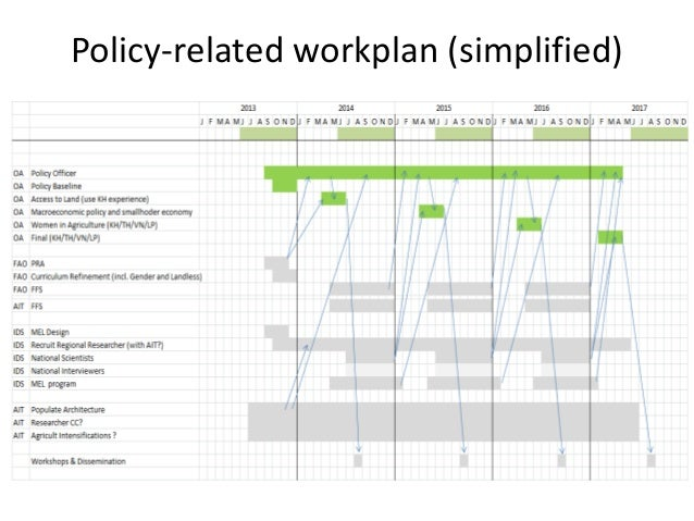 Policy-related workplan (simplified)