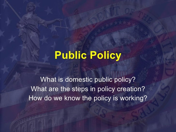 Public Policy What is domestic public policy? What are the steps in policy creation? How do we know the policy is working?