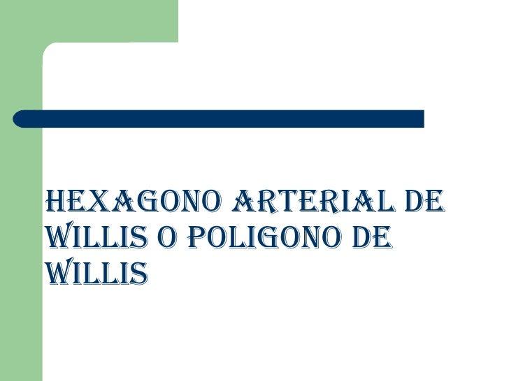 HEXAGONO ARTERIAL DE WILLIS O POLIGONO DE WILLIS
