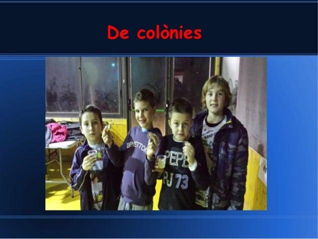 De colònies