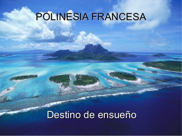 Fila 1 Fila 2 Fila 3 Fila 4 0 2 4 6 8 10 12 Columna 1 Columna 2 Columna 3 POLINESIA FRANCESAPOLINESIA FRANCESA Destino de ...