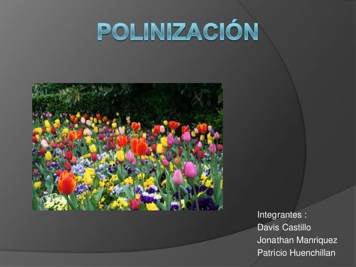 Polinización<br />Integrantes :<br />Davis Castillo<br />Jonathan Manriquez<br />Patricio Huenchillan<br />