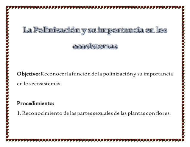 Objetivo:Reconocerlafunciónde lapolinizacióny suimportancia en losecosistemas. Procedimiento: 1.Reconocimiento de lasparte...