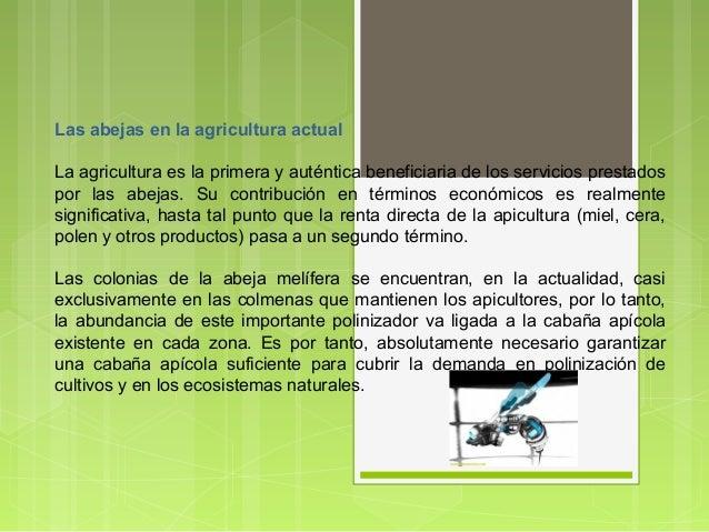 Las abejas en la agricultura actual La agricultura es la primera y auténtica beneficiaria de los servicios prestados por l...