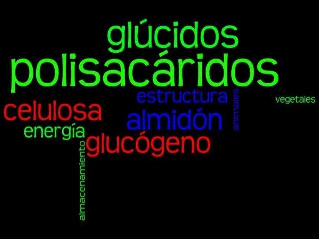 Polisacáridos • Glúcidos hidrolizables de alta masa molar. • Una molécula: muchas unidades de monosacáridos enlazados. • P...