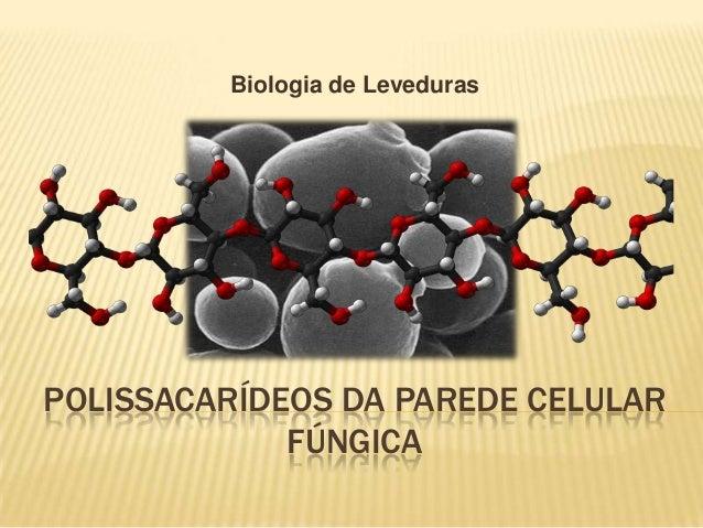 Biologia de Leveduras  POLISSACARÍDEOS DA PAREDE CELULAR FÚNGICA