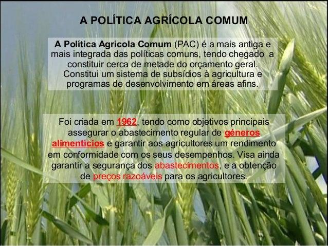 A POLÍTICA AGRÍCOLA COMUMA Política Agrícola Comum (PAC) é a mais antiga emais integrada das políticas comuns, tendo chega...