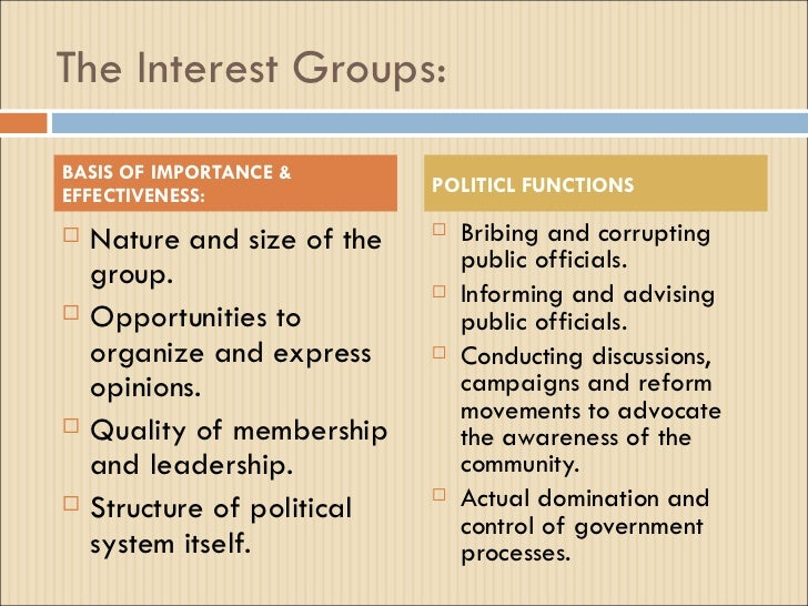 the interest group essay Interest groupselect an issue that's important in america today, and choose an interest group that has taken on that issue what tactics and methods do they use.