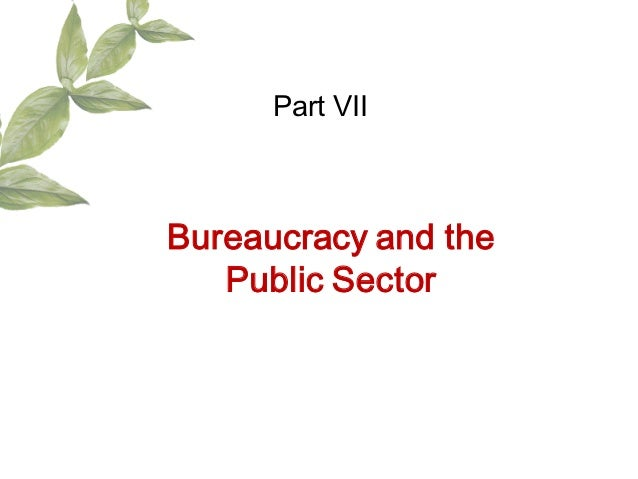 Part VIIBureaucracy and the   Public Sector